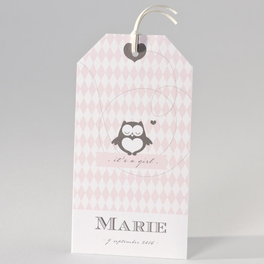 Schattig geboortekaartje met roze ruitjes 505067