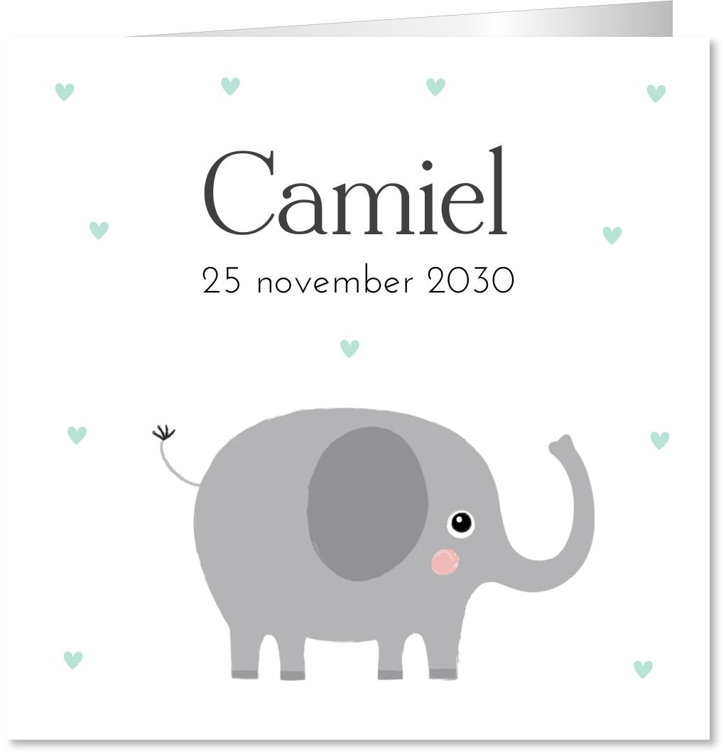 Geboortekaartje olifantje