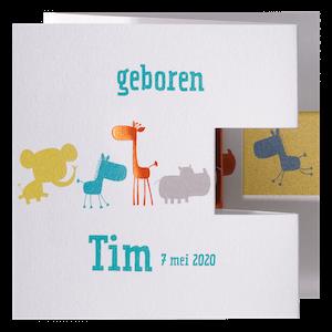 Vrolijk geboortekaartje met dieren in verschillende kleuren I 714053