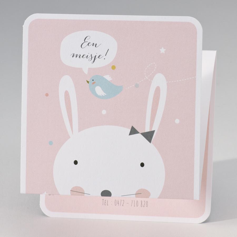 Lief babykaartje met konijn 507063