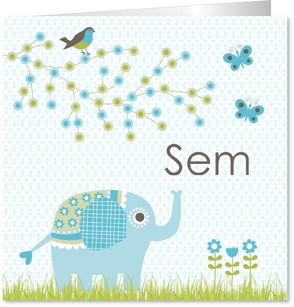 Geboortekaartje jongen olifantje