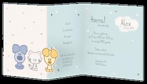 Lief babykaartje met Woezel en Pip en buurtpoes I Belarto 718058