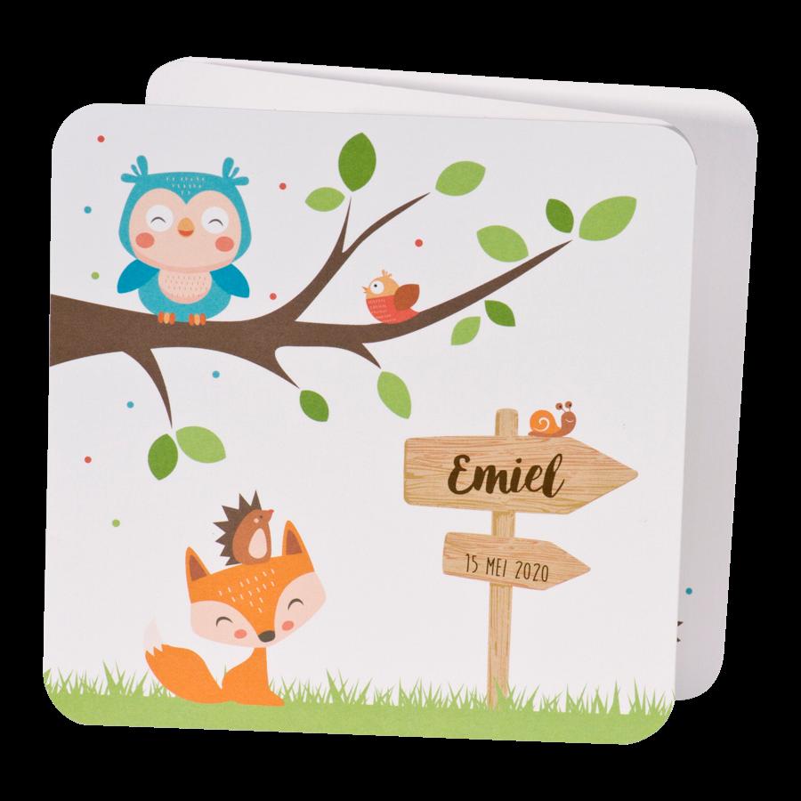 Illustratief geboortekaartje met uil en dieren I 507085