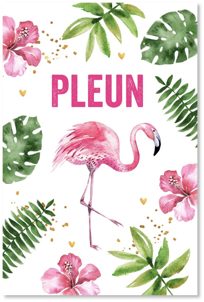 Geboortekaartje flamingo