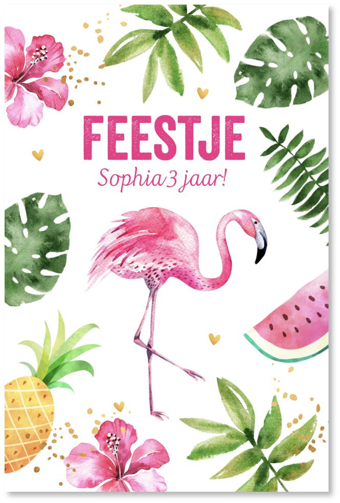 Kinderfeestje flamingo