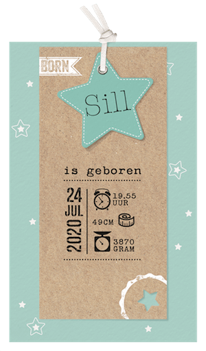 Trendy labelkaartje in mintgroen I 717035x