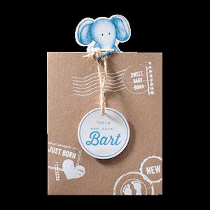 Geboortekaartje olifantje jongen - meisje I 715064 Belarto