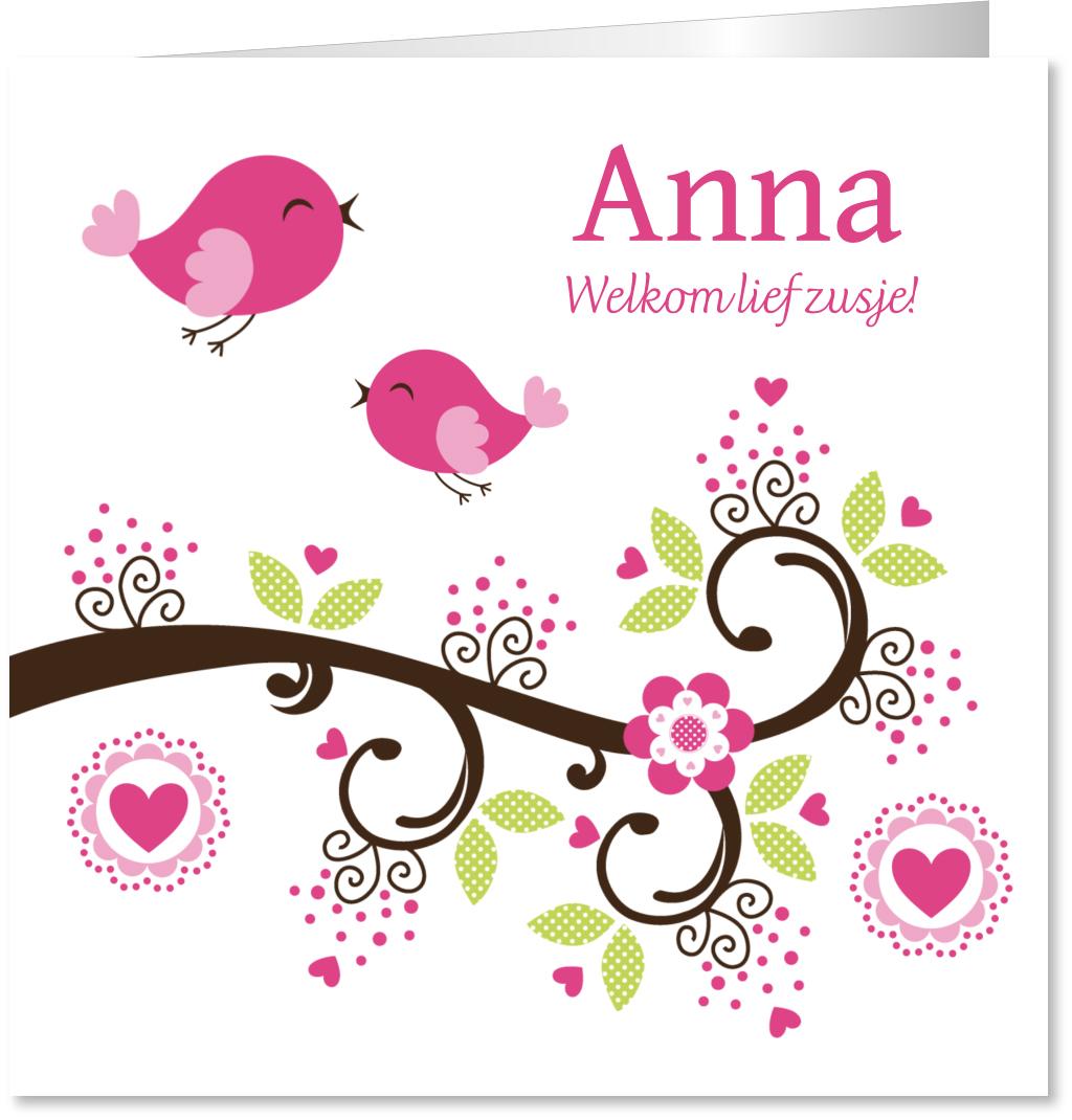 Geboortekaartje zusje vogels