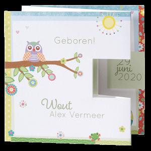 Vrolijk geboortekaartje van Belarto met uil I 715085