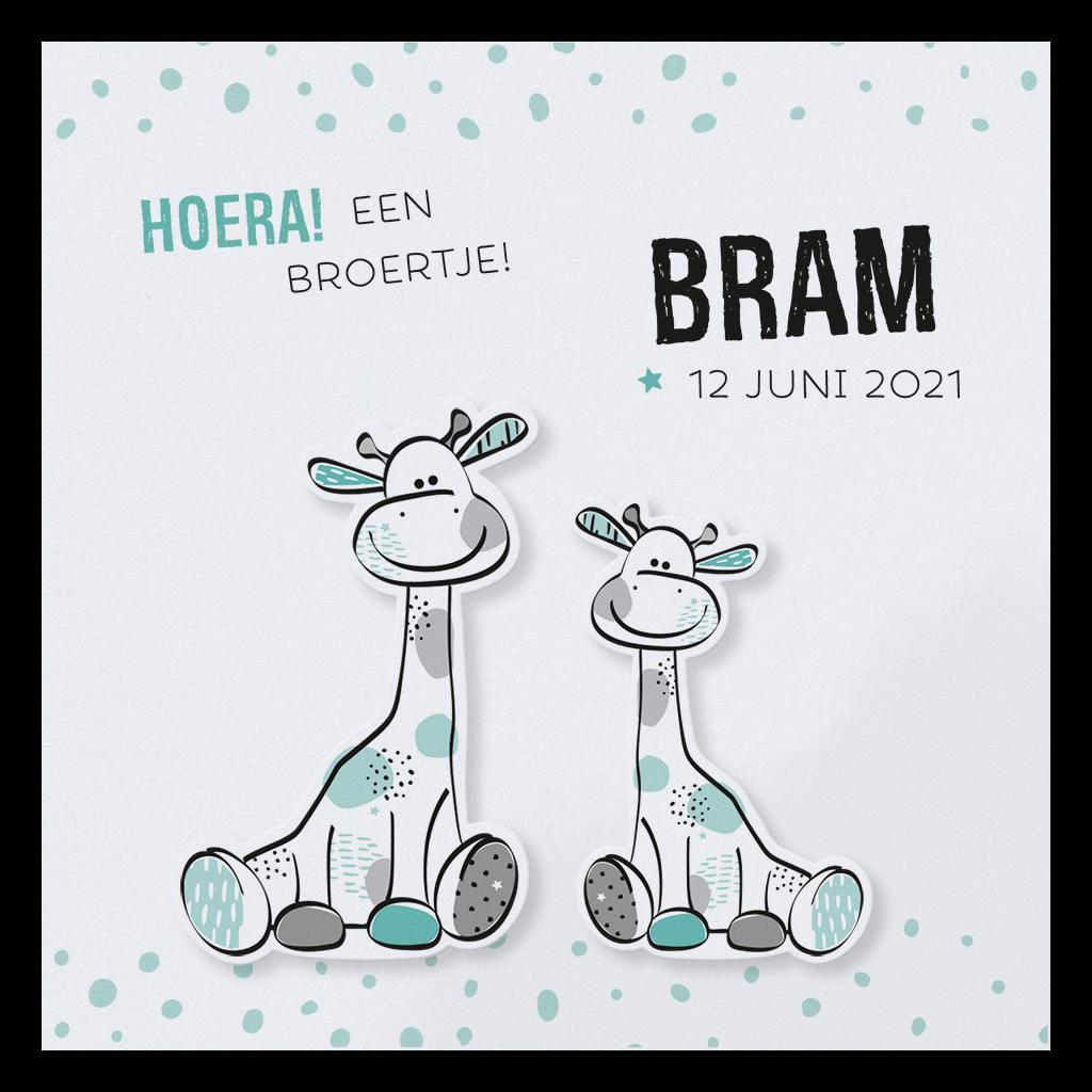 Hip geboortekaartje met twee broertjes giraffes I 718002