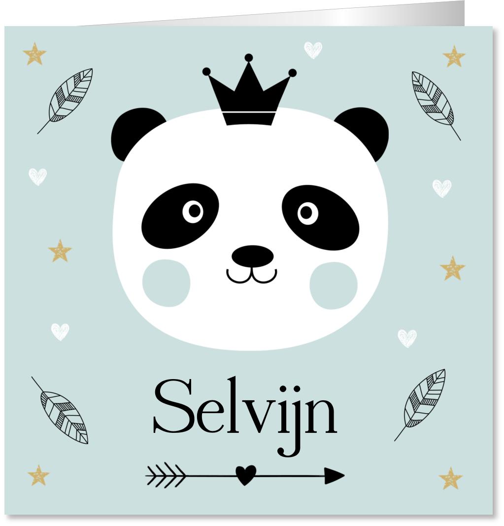 Geboortekaartje pandabeer jongen