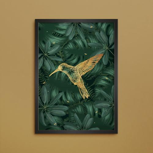 Poster kolibri - 50x70 cm